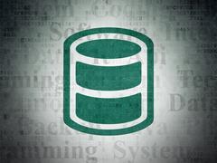 Software concept: Database on Digital Paper background Stock Illustration