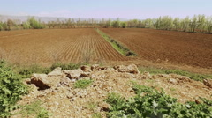 Agricultural field in Bekaa, Lebanon - stock footage
