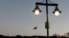 Road lamp in the park at night with 4k resolution Stock Footage