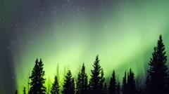 Alaska Aurora Borealis Explodes Through Trees Stock Footage