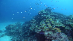 Ocean scenery a few wobbles when current hits, in lagoon entrance channel, HD, Stock Footage