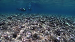 Ocean scenery following divers and riding the surge as we approach and enter Stock Footage