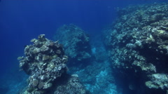 Ocean scenery travel ends in shallows interesting coral formations and Stock Footage