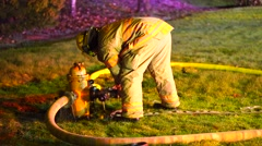 Firefighter working on a fire hose and fire hydrant Stock Footage
