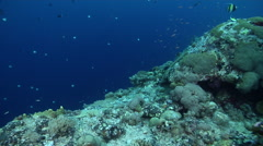 Ocean scenery on protected deep wall, HD, UP32955 Stock Footage