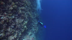 Buddy team of scuba divers taking images on seaward wall in Palau (Micronesia), Stock Footage