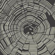 Tree Rings Background. Template for annual reports, brochures, etc Stock Illustration