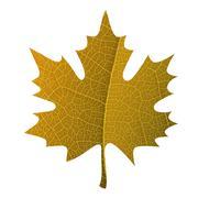 Orange maple leaf symbol isolated. With leaf veins realistic texture - stock illustration