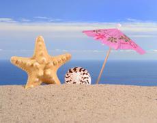 Starfish and seashell on a beach sand - stock photo
