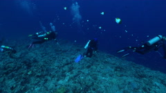Group of scuba divers looking around on exposed seaward wall and plateau with Stock Footage