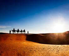Camel caravan going through the sand dunes in the Sahara Desert Stock Photos