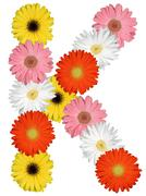 Letter K alphabet from flowers isolated on white - stock photo