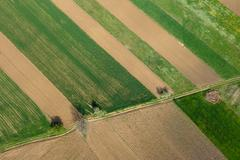 Aerial of farmland green fields and arable land. Agriculture parcel above - stock photo