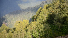 View from the cable car at slopes of mountains. Stock Footage