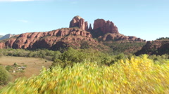 AERIAL: Flying over trees towards beautiful Red Rock butte mountains - stock footage