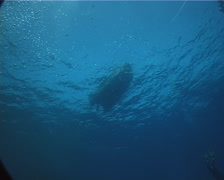 Ocean scenery looking up at skiff, with baitfish, on boat on the surface, UP1690 Stock Footage
