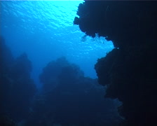 Ocean scenery on unlit hard coral formations, UP2875 Stock Footage