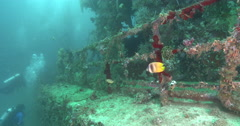 Ocean scenery along rails and approach to wheelhouse of the wreck heavily Stock Footage