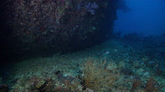 Ocean scenery exploring along rubble and hull, in lagoon entrance channel, HD, Stock Footage