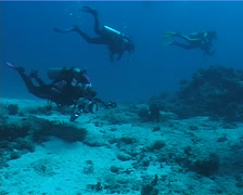 Housed SLR photographer taking images on deep coral rubble in Fiji Islands, Stock Footage