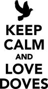 Stock Illustration of Keep calm and love doves