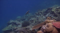 Ocean scenery strong current flowing into the lagoon produces perfect conditions Stock Footage