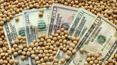 Agricultural concept, soy bean and money, zoom out HD video Stock Footage