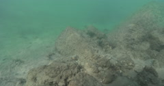 Ocean scenery slow pass over the protected eddy section, on river mouth rock Stock Footage