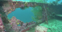 Ocean scenery WWII hull fully encrusted with sponges, soft and black corals, on Stock Footage