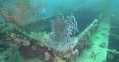 Male model scuba diver on wreckage in Solomon Islands, 4K UltraHD, UP35508 Stock Footage