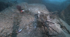 Lures and tangled line, up to early morning sun and fish, underwater, discarded Stock Footage