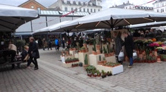 Flower and cactus stall at the covered market Torvehallerne in Copenhagen - stock footage