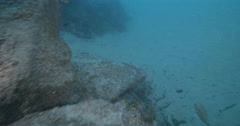 Drift moves in close to tangle of weed and line covering rocks, underwater, Stock Footage