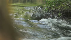 Rushing  water in forest in springtime Stock Footage