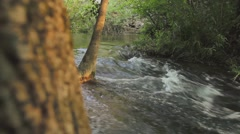Rushing  water in forest in springtime - stock footage