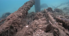 Lots of fish among pipes and rubbish, moderate current, underwater, Common Stock Footage