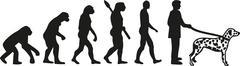 Stock Illustration of Dalmatian evolution
