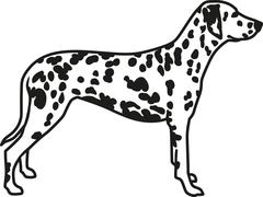 Dalmatian with spotted coat - stock illustration