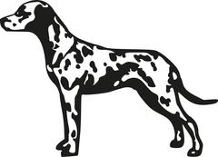 Dalmatian spotted coach dog Stock Illustration