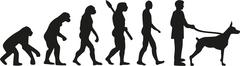 Doberman evolution - stock illustration