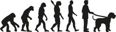 Stock Illustration of Giant Schnauzer  evolution