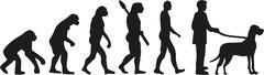 Great dane evolution Stock Illustration