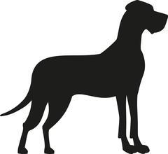 Great dane black silhouette Stock Illustration