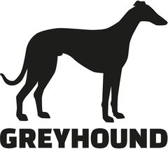 Greyhound with breed name Stock Illustration