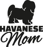 Havanese Mom Stock Illustration