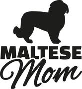 Maltese dog Mom - stock illustration