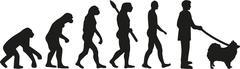 Pomeranian evolution Stock Illustration