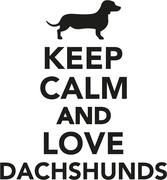 Keep calm and love Dachshunds - stock illustration
