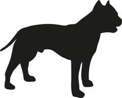 Staffordshire Bull Terrier silhouette Stock Illustration