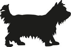 Yorkshire Terrier dog Stock Illustration